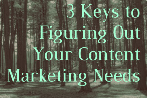 Many businesses understand that content is an important part of an online marketing strategy, however they don't really understand what is required beyond that. Here are some tips to help you figure out the specifics of your content needs.